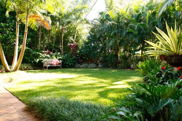 Covet Garden Jamaica Professional Landscapers Serviing